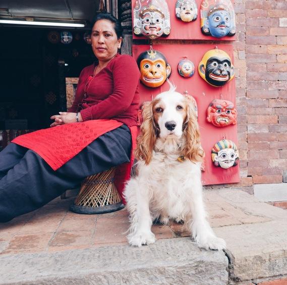 Village dog
